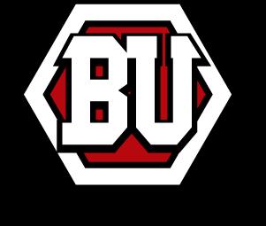 III2 Brands United_logo